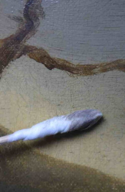 restauratie schilderijen - verwijderen oppervlaktevuil tijdens restauratie - Aelbert Cuyp - Landschap met Koeien en Herdersjongen  - atelier iddi den haag zuid holland